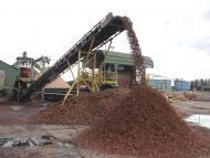 convoyeur à bande Tecnitude - Transport de bois mise en tas
