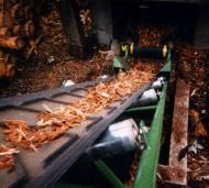 Convoyeur à bande Tecnitude avec bande à chevrons pour le transport d'écorces